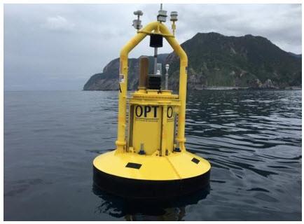31103-opt-buoy.jpg